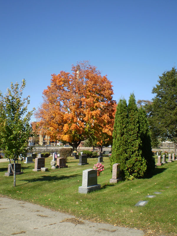 Oakwood Downtown Cemetery Landscape