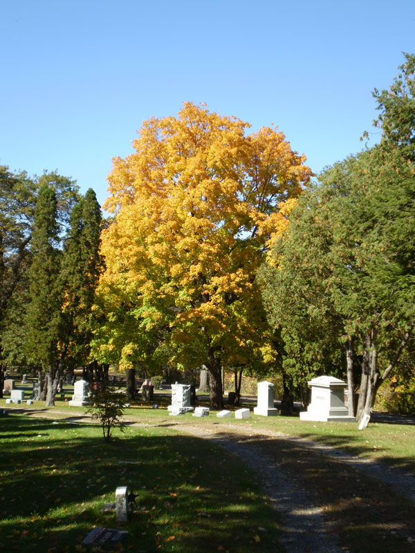Oakwood Downtown Cemetery Plots